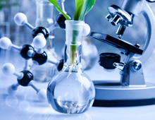 Life Sciences and Biotechnology
